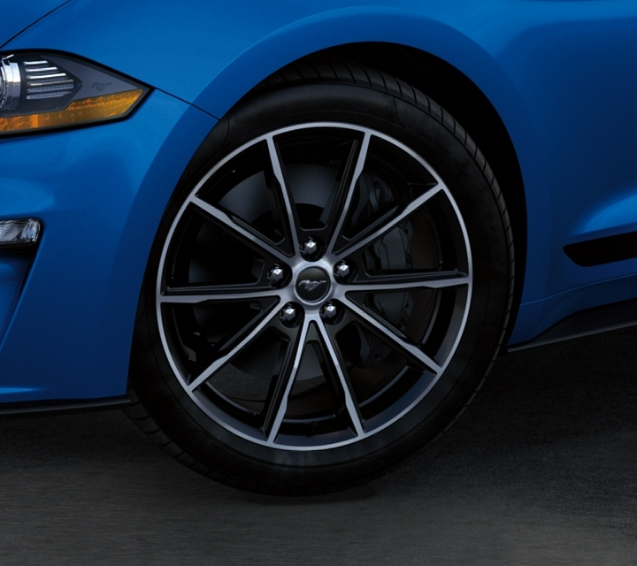 2020 Ford Mustang Ecoboost Fastback in Velocity Blue