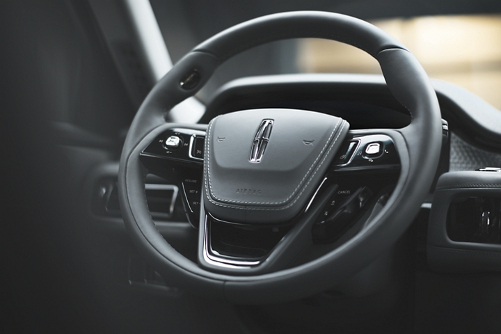 The steering wheel is shown with a number of intuitively placed controls
