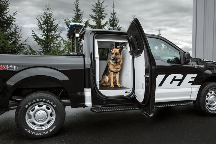 A police dog inside a k 9 outfitted ford f one fifty special service vehicle