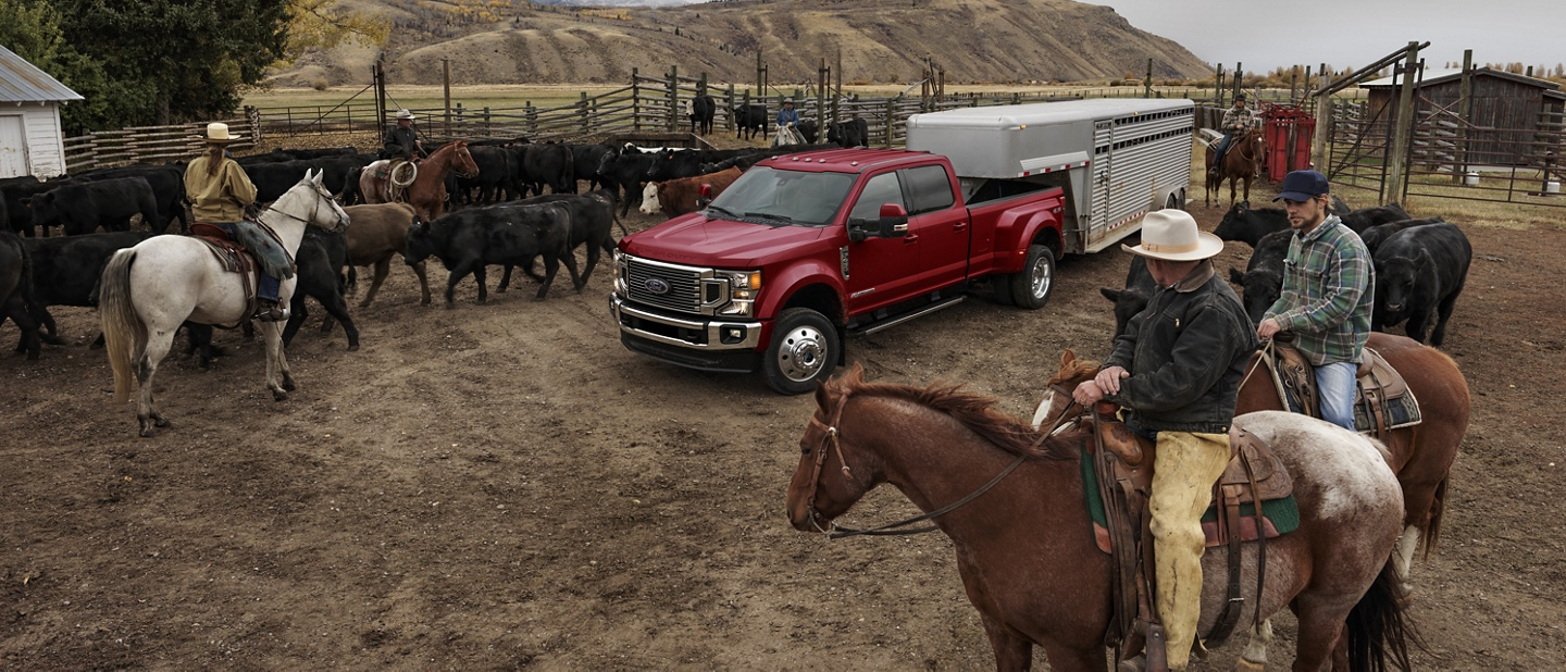 2020 Ford Super Duty shown towing a livestock trailer on a ranch