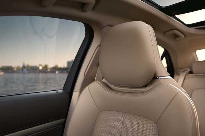 The front passenger seat shows the inviting nature of rich leather