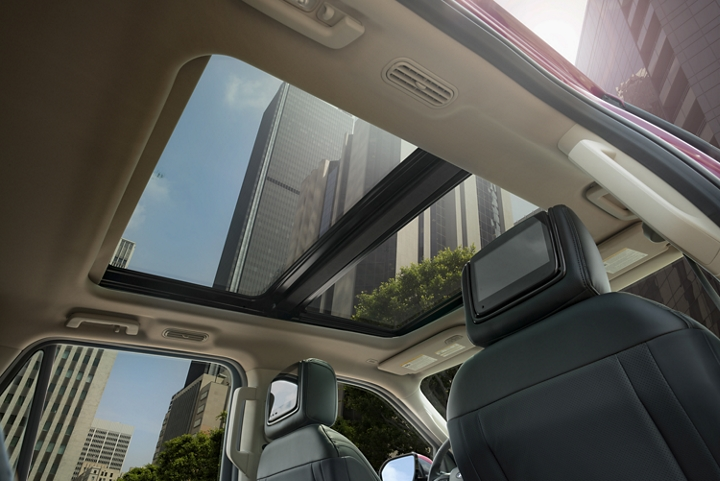 Panoramic Vista Roof