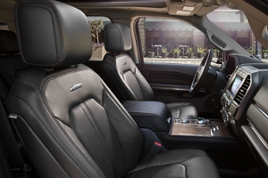 Ford Expedition Platinum