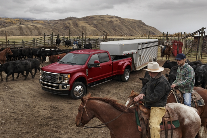2020 Ford Super Duty F 4 50 LARIAT in Rapid Red Metallic towing a horse trailer on a ranch