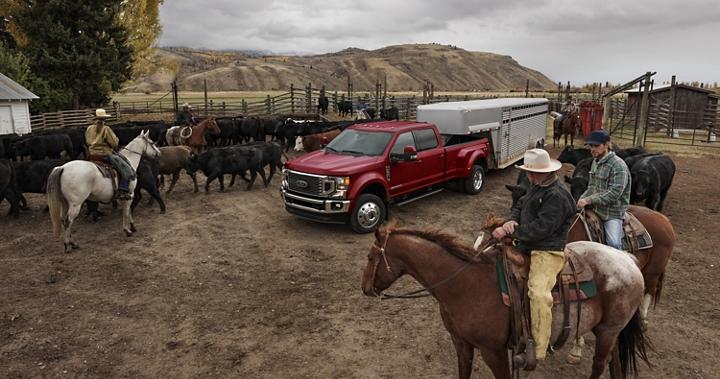 Rancheros a caballo miran cómo una Super Duty 2020 remolca un tráiler de caballo