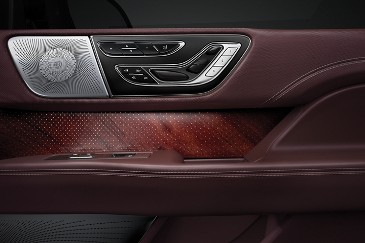The drivers door shows seat controls a covered audio speaker and real wood inlays to show a unique composition of shapes and textures